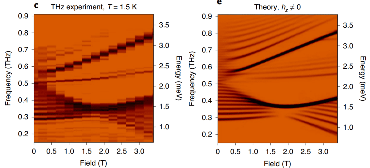 """<!-- wp:paragraph --> <p>By combining synthesis, THz spectroscopy, and theory, we show CoNb<sub>2</sub>O<sub>6</sub> is a """"twisted Kitaev chain"""" with bond dependent anisotropic interactions similar to those of the honeycomb Kitaev spin liquid.</p> <!-- /wp:paragraph -->"""